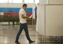 В Общественной палате назвали главных нарушителей единого дня голосования