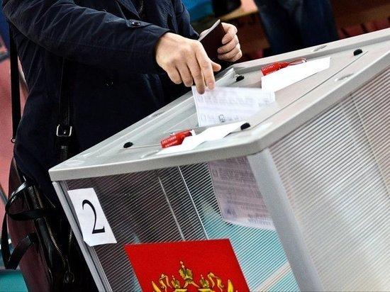 На выборах в Ярославской области проголосовало чуть менее 30 процентов избирателей