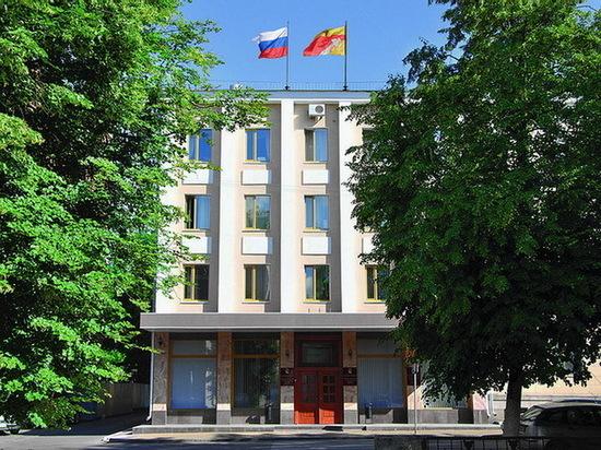В Воронеже сформируют новый состав городской Общественной палаты