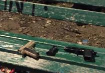Догхантер расстрелял хозяина овчарки на юге Москвы