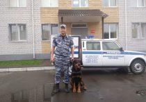 В Брянске полицейская собака Тайсон нашла подозреваемого в краже