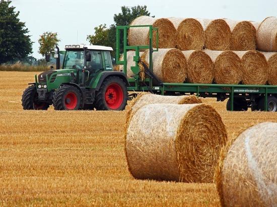На покупку тракторного завода нашлось 13 желающих