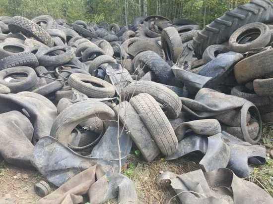 Нелегальную свалку покрышек ликвидировали в Арзамасском районе