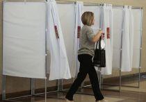 Наталья Зубаревич объяснила итоги выборов в Москве и России