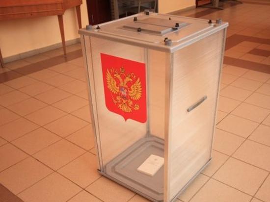 При позорно низкой явке «ЕдРо» продавило своих ставленников на выборах в Поморье