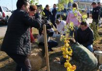 Чиновники и дети посадили деревья в Салехарде