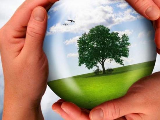 Хабаровск: шесть проектов – не предел