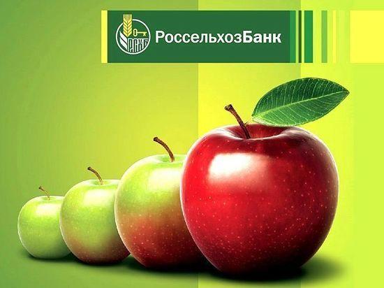 Средства клиентов в Россельхозбанке на Алтае превысили 28 млрд рублей