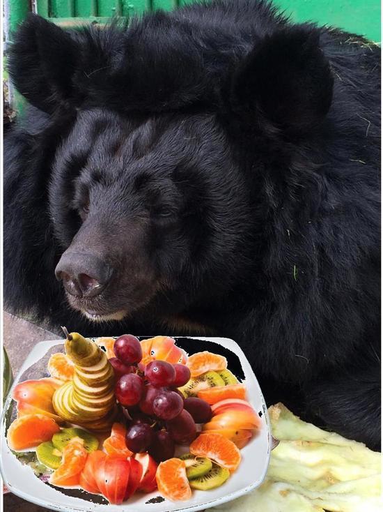 Абаканский зоопарк просит жителей Хакасии принять участие в акции «Добрый урожай»