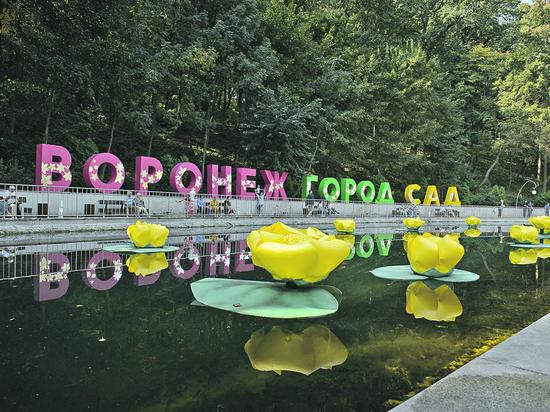 Фестиваль «Город-сад» в Воронеже собрал рекордное количество гостей