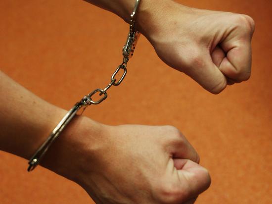 В Подмосковье отец попытался изнасиловать дочь секс-игрушкой