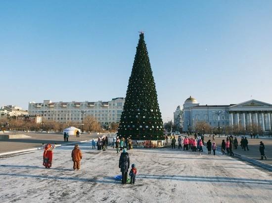 Власти Читы предложили горожанам выбрать новогоднюю ёлку