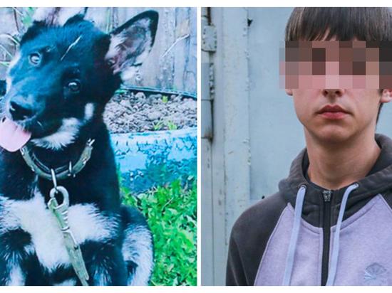 Более 130 тыс. человек подписались в защиту томского подростка с собакой