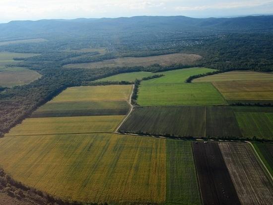 Результат программы «ДВ гектара» в Забайкалье проявится через три года