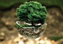 Алтайский край занял второе место в рейтинге экологически чистых регионов РФ