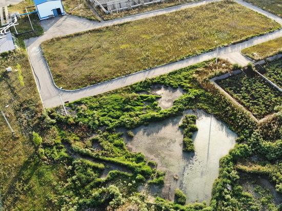 Жители Новой Усмани пожаловались на вонь от очистных сооружений
