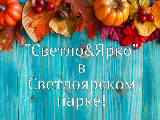 Семейный фестиваль пройдет в Светлоярском парке 15 сентября