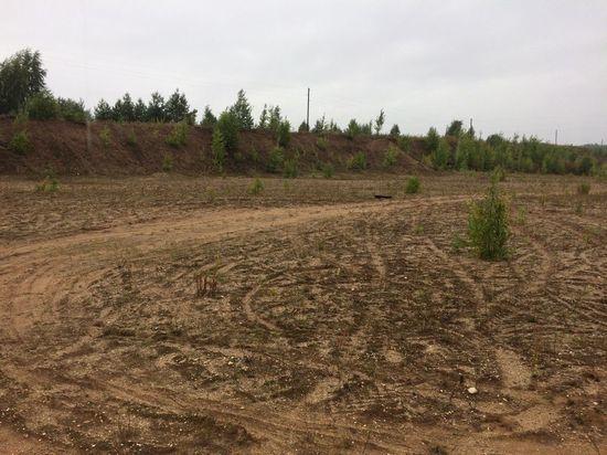 В Тверской области на землях сельхозназначения вырыли карьер