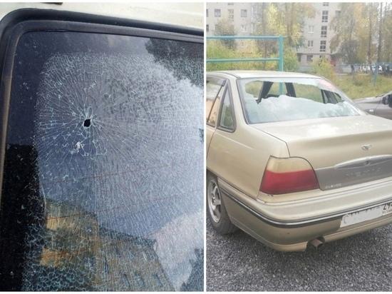 В Архангельской области расстреляли машину экоактивистки