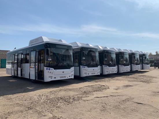 Вторая партия новых автобусов прибыла в Арзамас