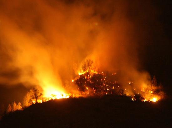 Лесным пожарам снизят температуру