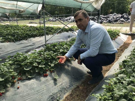 Кто в Крыму взвинчивает цены на крымские продукты