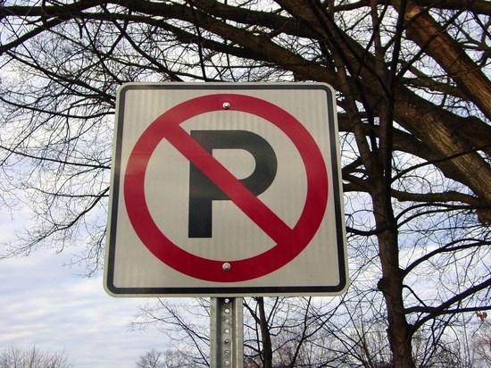 Мэрия Ярославля запретит на Полушкиной роще парковать автомобили