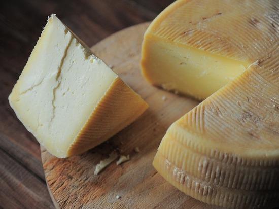 Названы полезные для здоровья свойства сыра