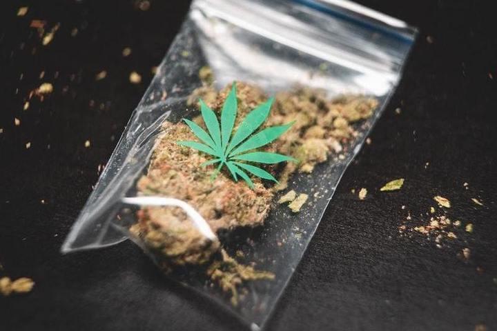 В волгограде поймали с марихуаной марихуаной язва