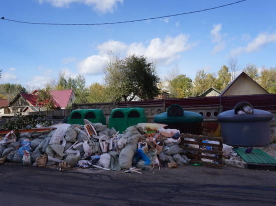 Тестируемые в Калуге контейнеры ТКО завалены мусором