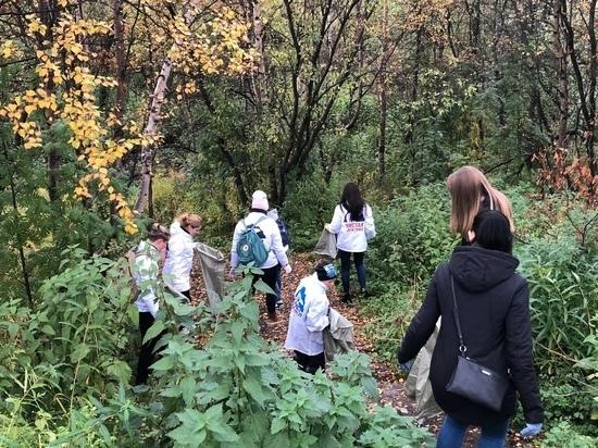 В Мурманске волонтеры почистили Чистый ручей