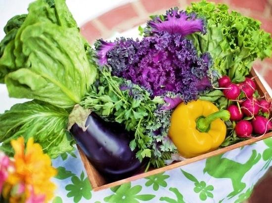 В барнаульском ТК «Индустриальный» начали сеять овощи