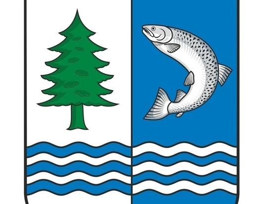 В Беломорском районе выбрали свой герб и флаг