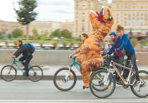 В России уважают велосипеды: с 16 сентября в стране начинается эксперимент по маркировке двухколесного транспорта и велосипедных рам