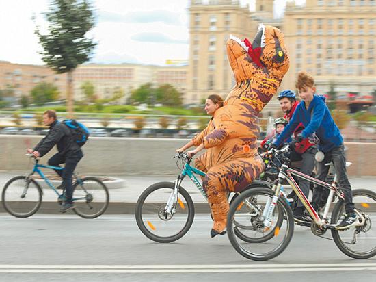Велосипеды в России собрались поставить на учет