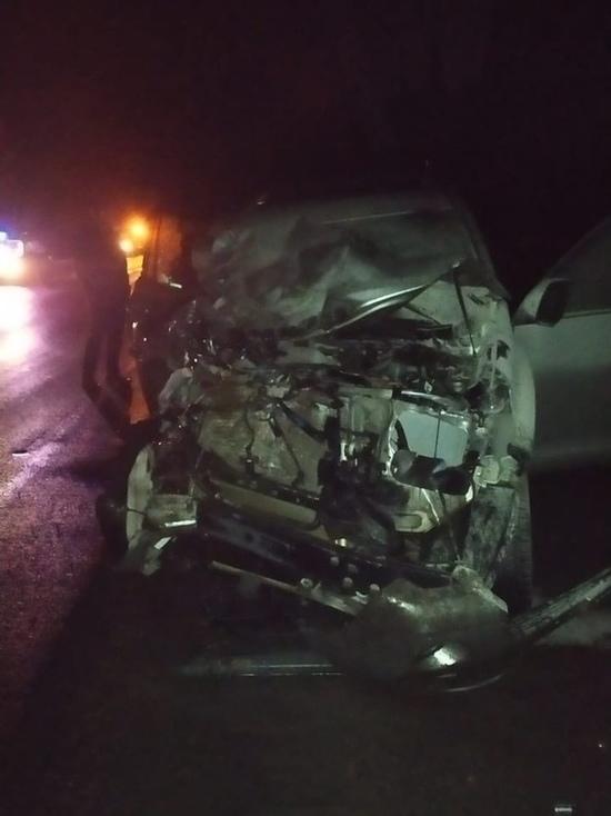 В Карелии произошло ДТП из-за лося на трассе: погибла женщина