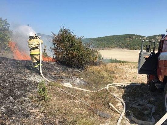 Три часа, два гектара: в Крыму случился крупный природный пожар