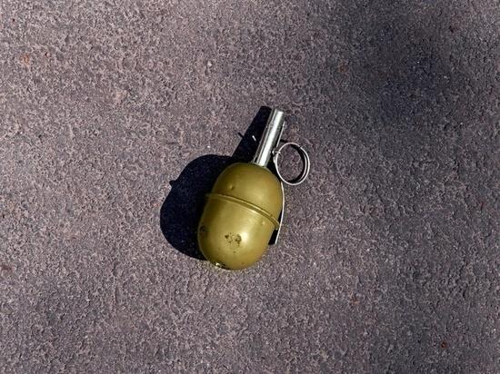 В Новосибирске мужчина, взорвавший на улице гранату, получил условно