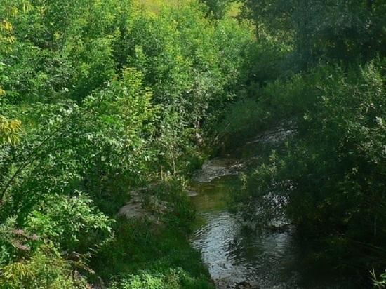 Реку Старку и озеро Больничное почистят в рамках всероссийского субботника