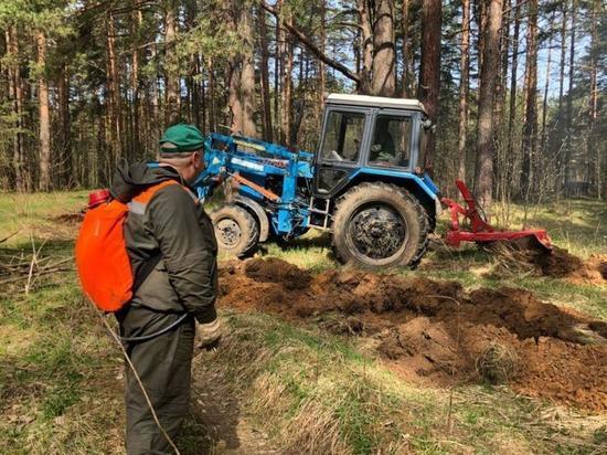 В Ярославской области проложили 800 километров противопожарных лесных полос