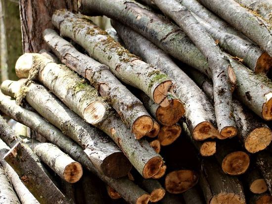 Топить печь дровами нижегородцам обходится все дороже