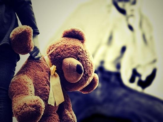 Удмуртский педофил развращал соцсети от имени 14-летней девочки