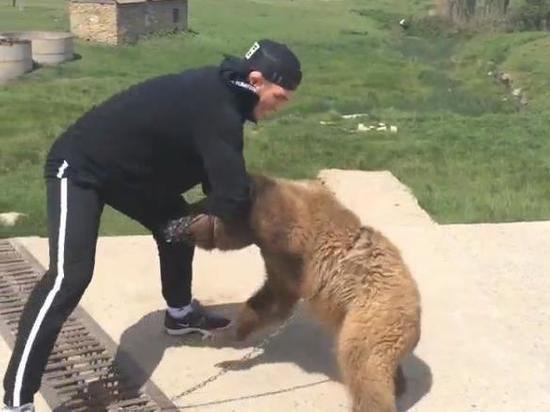 Хабиба Нурмагомедова требуют наказать за избиение медвежонка