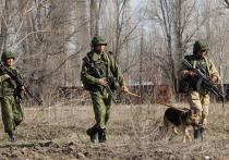 Эксперты объяснили причину конфликтов между Киргизией и Таджикистаном: «Эрозия государственности»