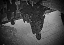 Погода на Ямале сегодня: повсюду дождь