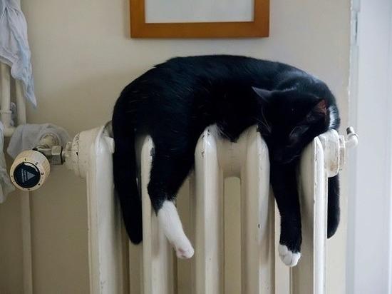 Завтра в домах кировчан появится отопление