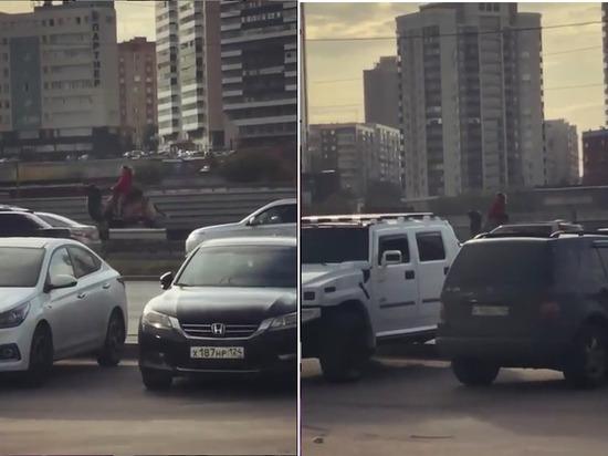 Наездницу на верблюде обсуждает весь Новосибирск