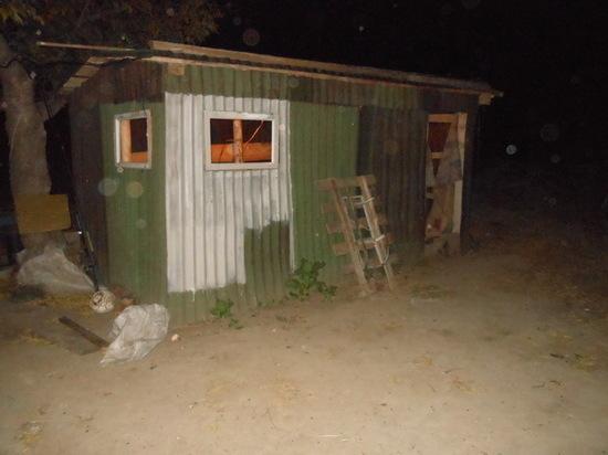 В Саракташском районе зять ограбил тещу