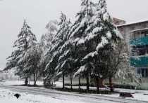 Побит рекорд по снегопаду в Хабаровском крае