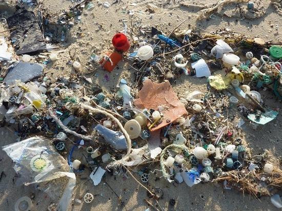 Краснодарцам покажут, как создавать звуки из мусора